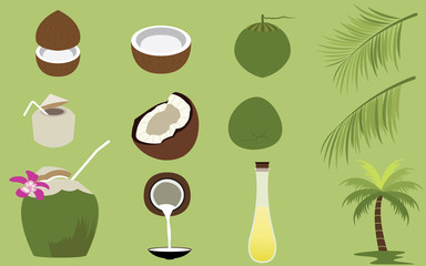 Set of many Products of Coconut Tropical Fruit Vectors