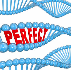 Perfect Genes DNA Hereditary Health Good Wellness Condition