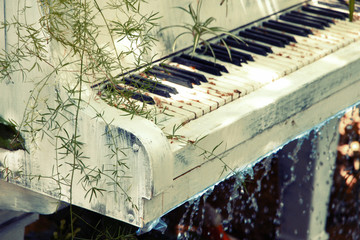 Garden with pond and piano in retro style