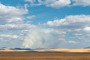 Fire in steppe