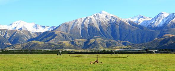 alpine alps in New Zealand