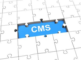 CMS Puzzle