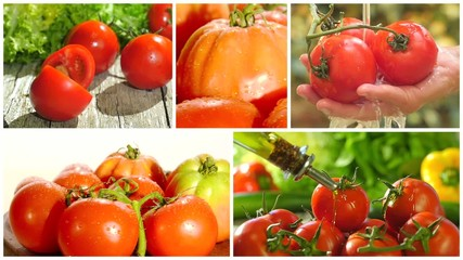 fresh tomatoes collage