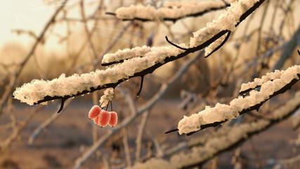 Schneebedeckte Zweige im Gegenlicht, 3D Render