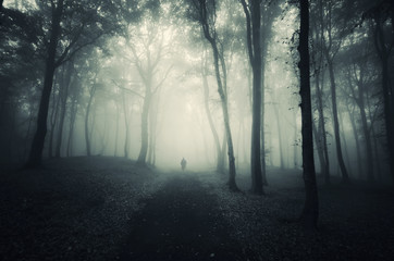 man walking on path through a dark forest