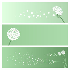 card with dandelion