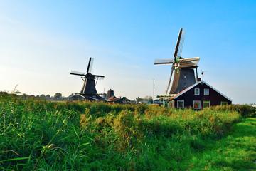 Dutch windmills in summer