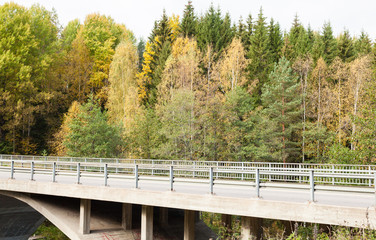 Empty motor road in autumn