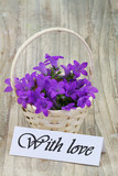 With love card with purple Campanula flowers