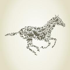 horse animals