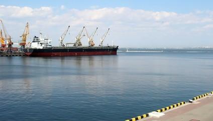 industrial cargo with cranes