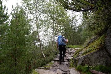 Wanderweg am Grawa-Wasserfall