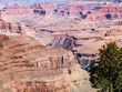 Red rocks of Grand Canyon