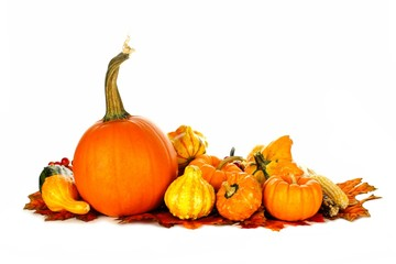 Group of autumn pumpkins and vegetables over white