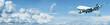 Постер, плакат: Jumbo jet in a blue cloudy sky