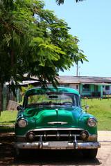 verte cubaine