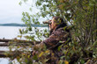 hunter looks through the binoculars at the river - 71406848
