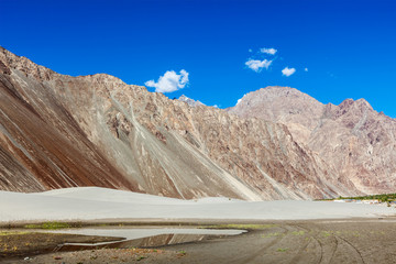 Sand dunes. Nubra valley, Ladakh, India