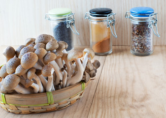 Brown beech, Buna shimeji mushrooms.
