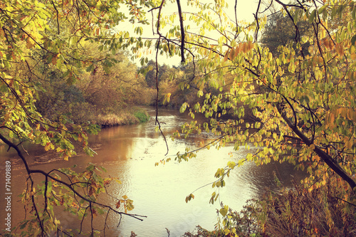 Colorful autumn weather over the wild river in the forest - 71409889
