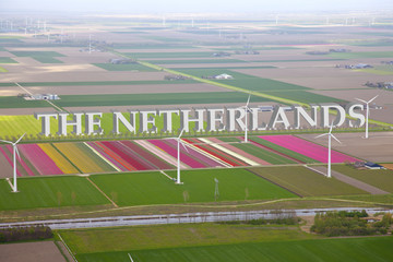 Dutch colourful flower field from above with Netherlands 3d Text