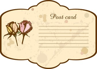 Vintage post card with ink drawn colored roses