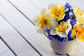 Daffodils  and scillas