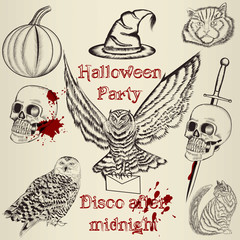 Collection of vector hand drawn elements for Halloween design