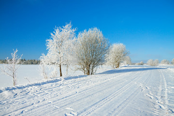 winter  rural landscape with the road the forest and the blue sk
