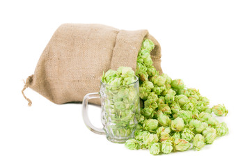 Mug and bag full of hops.