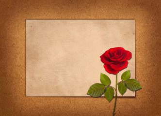 old greeting card with red rose