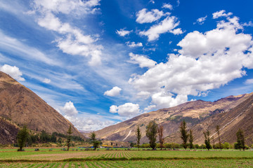 Sacred Valley Fields