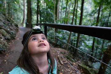 Springbrook National Park - Queensland Australia