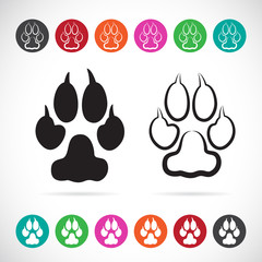 Vector image of paw print on white background