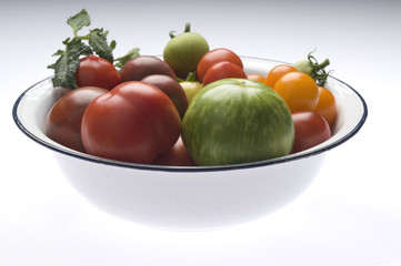 Grüne Zebratomate und andere alte Tomatensorten