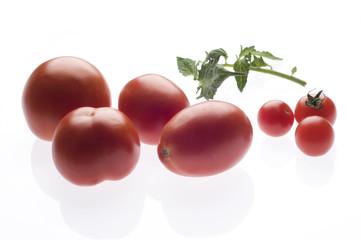 Köstliche reife Tomaten
