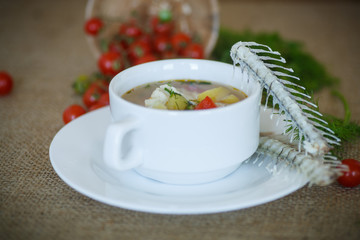 fish soup with vegetables on the plate on the table