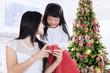 Girl giving present at christmas day