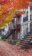 montreal residential architecture at fall