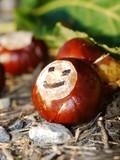 horse chestnut autumn fall smiley