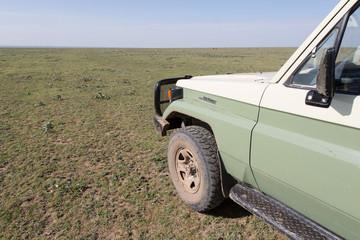 Africa Tansania Serengeti