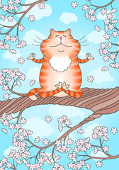 Cat practicing yoga on cherry tree