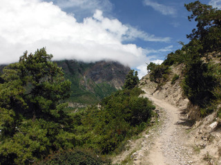 Sandy Mountain Trail in the Green High Himalayan Plains