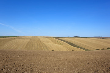 yorkshire wolds harvest