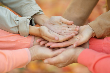 Hands together against leaves