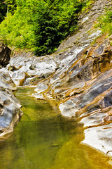 Flowing water of a mountain river