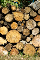 image of dry firewood laid in a heap for kindling the furnace