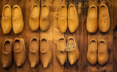 Holland's wooden shoes