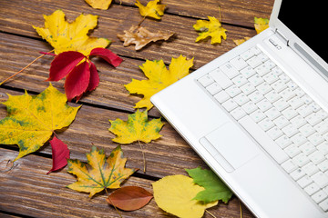 Notebook and autumn leafs on a table