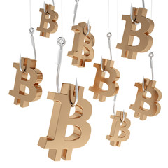 Many symbols bitcoin of gold on fishing hooks.